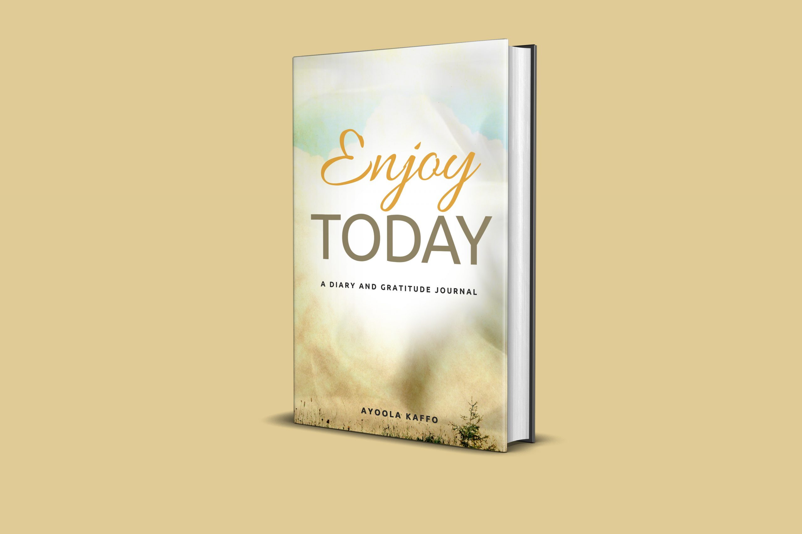 Enjoy Today: A Diary and Gratitude Journal